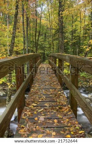 Walking bridge along Stoney brook hiking trail in the White Mountain National Forest in New Hampshire.