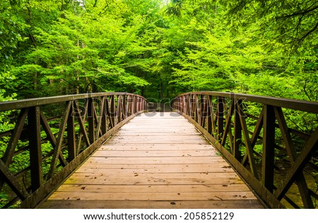 Walking bridge over a stream, at Great Smoky Mountains National Park, Tennessee.