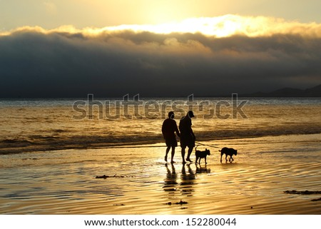 Walking dogs on beach at sunset