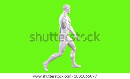 walking man on green screen 3D rendering