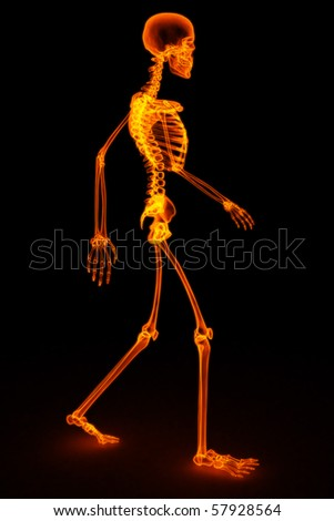 walking skeleton by X-rays in red. 3D image.