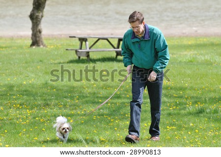 Walking The Dog - A man walking with his dog in the park on a sunny spring day.