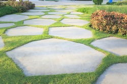 Walkway and bush in garden. Also called concrete pavement, floor, passage, path, footpath, pathway or passageway. Include natural plant, lawn and grass. For walking along and decorative park, garden.