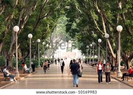 Walkway - Hyde Park, Sydney, Australia