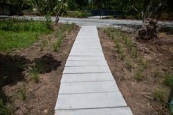Walkway in the garden with blur foreground and background