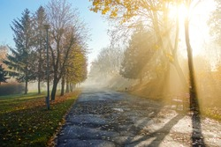 Walkway in the sun in the autumn park. Autumn mood concept. Vibrant photo wallpaper. Picturesque nature photography. Soft light effect. Location place Ukraine, Europe. Discover the beauty of earth.