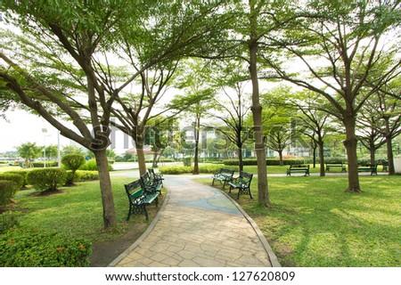 Walkway into garden