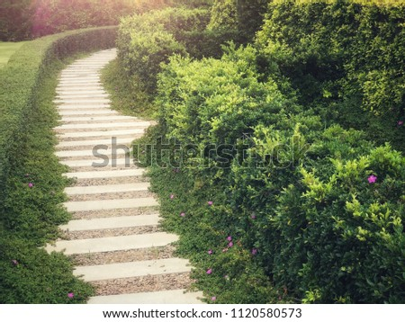 Walkway or route with natural grass, direction concept, future, step by step, route of life, lifetimes #1120580573