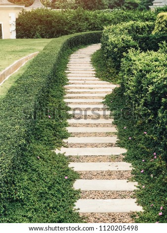 Walkway or route with natural grass, direction concept, future, step, route of life, lifetimes #1120205498