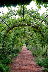 Walkway through English country garden