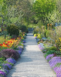 Walkway Through Peaceful Spring Scenery with Blossoms