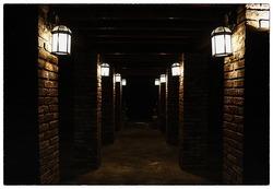 Walkways,dark lighting, grounding pole, space under the building.