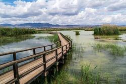 Walkways over lakes at Parc Natural el Fondo in Valencia, Spain