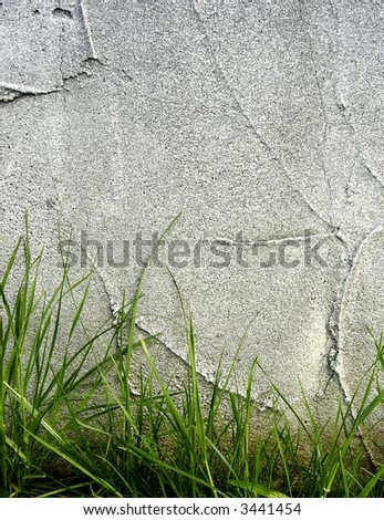 wall and grass background