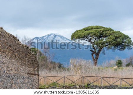 Wall and Mt. Vesuvius in the Ruins of Pompeii Italy