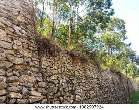Wall and trees near Belo Horizonte, Brazil #1082507924