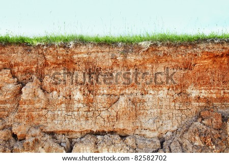 Wall cliff - clay brown soil and grass