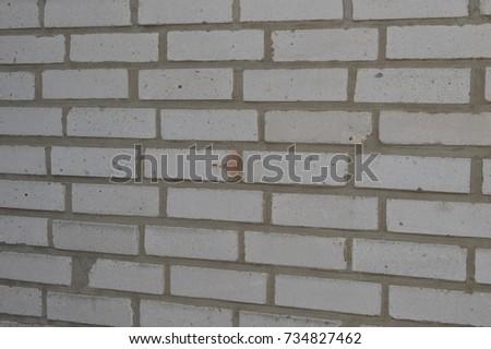 wall detail #734827462