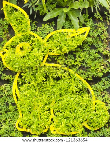 Wall garden with Rabbit pattern