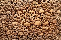 Wall made of human bones