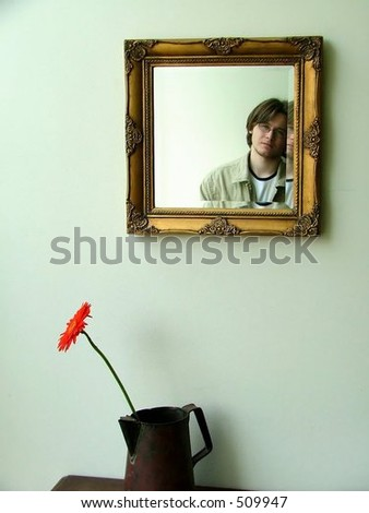 wall, mirror, man and a lonely african daisy