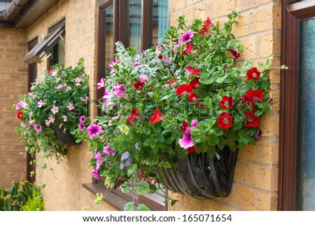 Wall Hanging Baskets wall mounted hanging baskets with a range of summer flowers stock