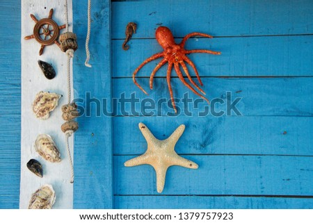 Wall of fishermen's hut in the Fishermen's district (village) of Sete called La Pointe Courte  #1379757923