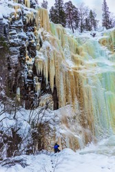 Wall of frozen water. Multicolored icicles fall off a steep cliff. Christmas in Lapland. Man -  tourist in a blue jumpsuit climbs to frozen waterfall. The concept of photo and eco-tourism