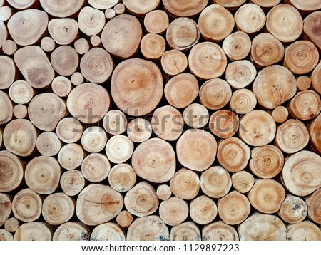 Photo of  Wall of stacked wood logs as background