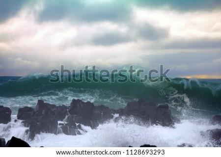 327dd909eb9b Shutterstock - PuzzlePix