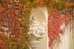 wall with creeper plant and statue in Vienna autumn season