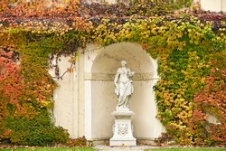 wall with creeper plant colorful leaves and statue in Vienna autumn season