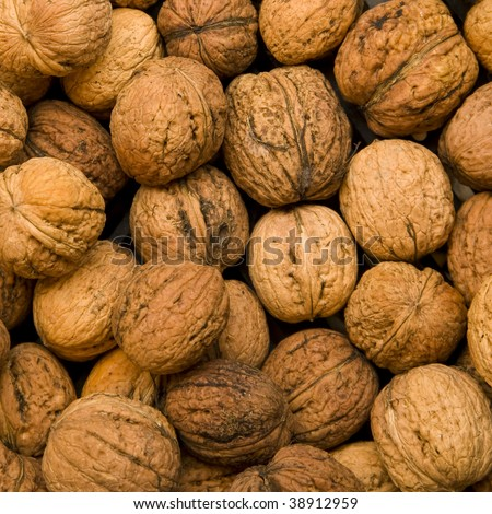 I'll Just Leave This Here... Stock-photo-wallnuts-background-these-nuts-are-known-as-the-common-walnuts-persian-walnuts-or-english-walnuts-38912959