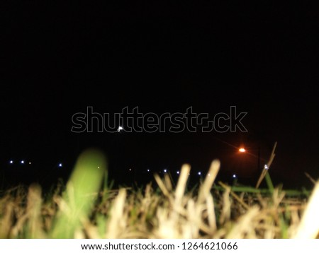 Wallpaper like picture of park in night. #1264621066