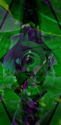 Wallpaper of deep grean and purple forest.