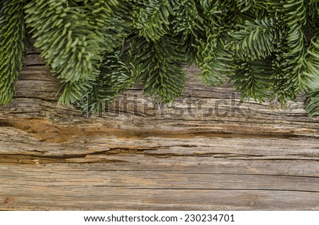 Wallpaper with fir branches on wooden background