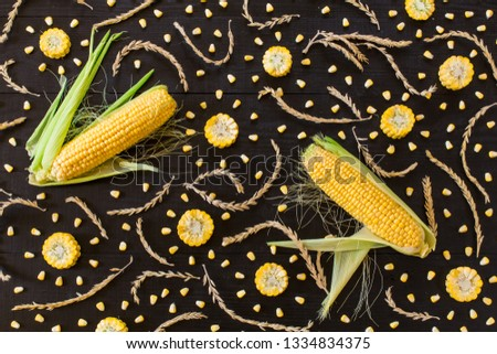 Wallpapper with corn and wheat on dark background #1334834375