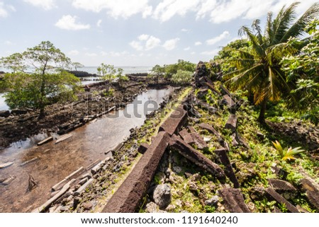 Walls and canals of Nandowas part of Nan Madol - prehistoric ruined stone city built of basalt slabs on islands and canals, overgrown with palms. Pohnpei, Micronesia, Oceania.