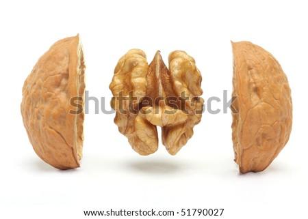 Walnut against white background