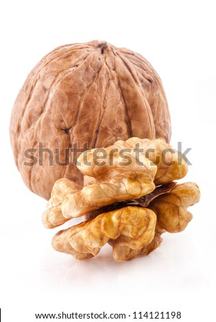 Walnut and a Kernel isolated on the white background, closeup