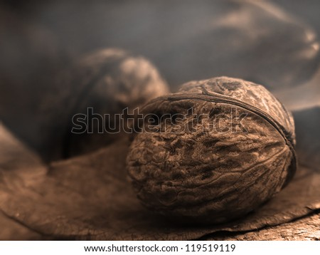 Walnut. Check my portfolio for more amazing nature photos.
