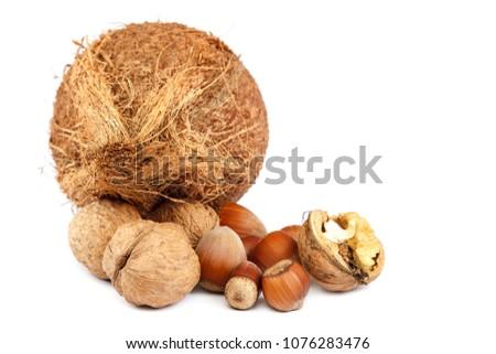 Walnut, hazelnut and coconut isolated on white background. #1076283476