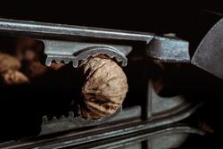 Walnut in a nutcracker close-up. Dark background. Beautiful background with food. Healthy ingredient. Useful Nutrients. Tasty diet snack. Macro. Brown color nut. Photo art. Nutshell tool. Wallpaper.