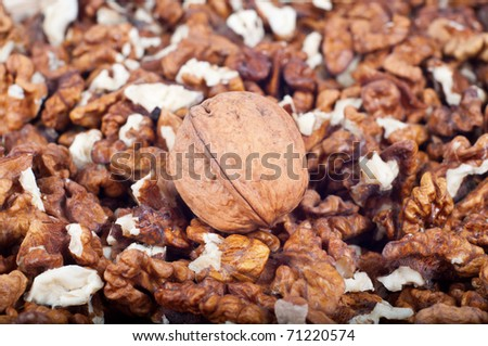 walnut in shell nuts on the other