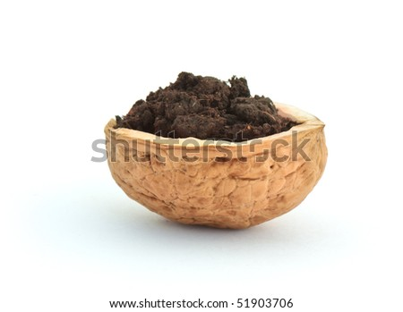 Walnut shell with soil isolated on white