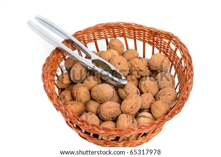 Walnuts in front of a white background