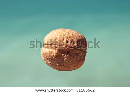 Walnuts in the air, against a background of sea.