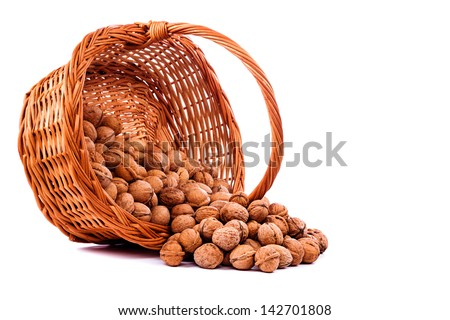 Walnuts in wicker basket on  white background