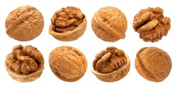 Walnuts isolated on white background with clipping path, collection