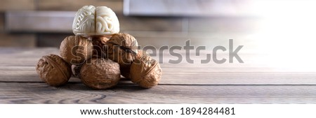 Walnuts like healthy food for the brain. Shape of human brain is surrounded by walnut kernels. It symbolizes how brain similarity with walnuts and proven effectiveness as healthy food for brain.